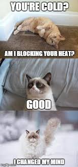 Grumpy Cat Snow Meme - wizard s cat tip 37 nothing changes a cats mind like snow imgflip