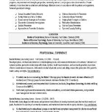 download sample social work resume haadyaooverbayresort com