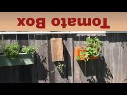 Upside Down Tomato Planter by Upside Down Tomato Planter Boxes Mikes Inventions Youtube