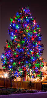colored tree lights free coloring