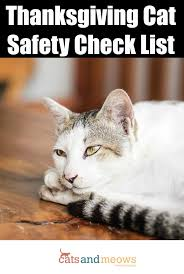 cat safety check list keep your pets safe during the holidays
