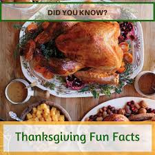 did you thanksgiving facts team