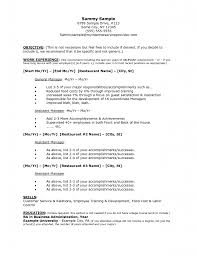 Work Experience Resume Format For It by Resume Objective Examples Law Enforcement