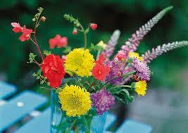fresh cut flowers flower food for fresh cut flowers hunker