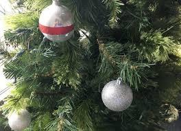 live christmas tree where can you recycle your christmas tree al