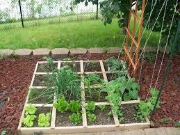 front to back left to right 1 lettuce lettuce lettuce