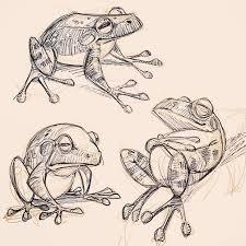 david hohn david hohn frog designs for a book i m