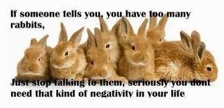 Chocolate Bunny Meme - rabbit ramblings bunny monday meme day