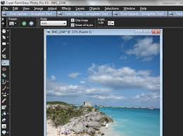 how to correct image distortion in paintshop photo pro