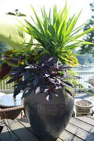 best planters planter live laugh love lake
