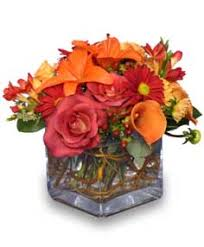 seasonal potpourri fresh floral design vase arrangements