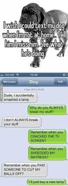 Dog Text Meme - i wish i could text my dog