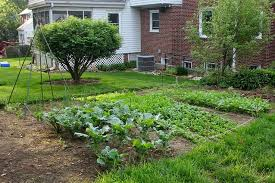 backyard vegetable garden design ideas backyard vegetable