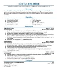 Systems Analyst Resume Sample by Sample Resume Sample Resume Template For Job Application Example
