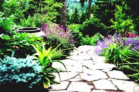 Cheap Backyard Landscaping by Simple Garden Ideas Design Idea With Lawn Images Gardening On
