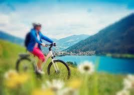 Fahrrad Bad Homburg E Bike Akku Diagnose Reparatur Fahrrad Akku Reparatur