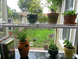 eye growing herbs s colorado front range gardening how to grow an