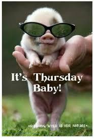 Thursday Meme Funny - top 27 thursday meme quotes and humor