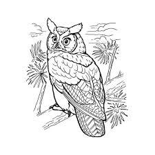 94 dessins de coloriage papillon hugo l u0027escargot à imprimer