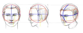 how to draw a face proportions