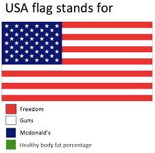 American Flag Meme - usa flag stands for memes pinterest memes