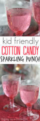 best 25 kids punch recipes ideas on pinterest pineapple punch