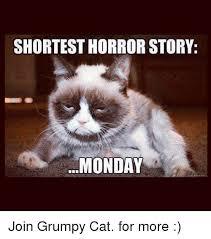 Grumpy Cat Monday Meme - 25 best memes about cat cat memes
