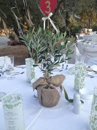 Tree Centerpiece Wedding by Olive Tree For Centerpieces Bing Images Retreat Ideas