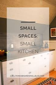 small space living all things big and small