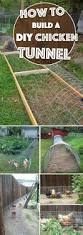 129 best garden ideas images on pinterest backyard ideas best