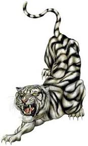 black and white angry tiger