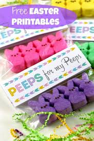 Pinterest Easter Peeps Decorations by Best 25 Easter Funny Ideas On Pinterest Bunny Bread Funny
