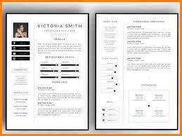 Sample Of Modern Resume by Download Two Page Resume Sample Haadyaooverbayresort Com