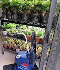 water trough planter inside urban green sip sub irrigated planter aka incorrectly as