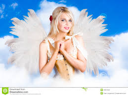 fairy wings stock photos royalty free pictures