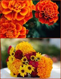 fall flowers for wedding fall wedding flowers seasonal flower guide and ideas budget