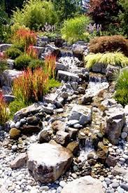 50 super easy dry creek landscaping ideas you can make back