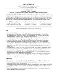 sales executive resume sales executive resume exles krida info