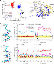 structure and dynamics underlying elementary ligand binding events