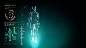 Human Anatomy Full Body Picture Futuristic Interface Display Of Full Body Scan With Human Anatomy