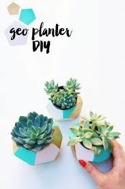 5409 best the ideal chef knife images on pinterest kitchen color blocked geo planters are my current favorite outdoor accessory and make a