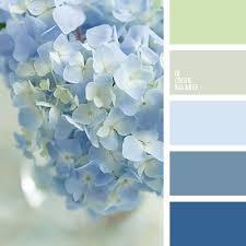 Colour Combination With Blue Best 25 Blue Color Schemes Ideas On Pinterest Blue Color