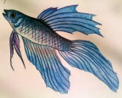fish pencil drawing by darkpsychoangel on deviantart
