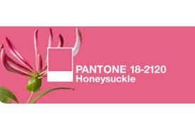 pantone colors of the year pantone color of 2011 honeysuckle pink u2014 engaging events