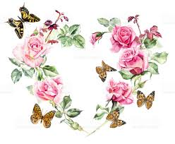 frame from roses and butterflies stock vector more
