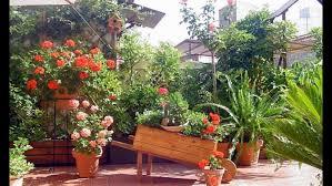 imagenes de jardines pequeños con flores decoracion jardines con piedras y flores blancas para llantas patios
