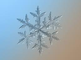 photos of snowflakes up close insider