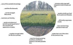 crop planning and management in organic agriculture teca