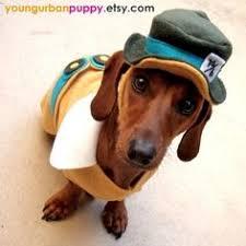 Disney Halloween Costumes Dogs Infinite Picdump 1 Dachshunds Dog Poor Dog