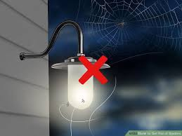 Are Spiders Attracted To Light 4 Ways To Get Rid Of Spiders Wikihow